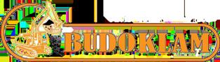Budoklam – Roboty ziemne, transport, wyburzenia i inne